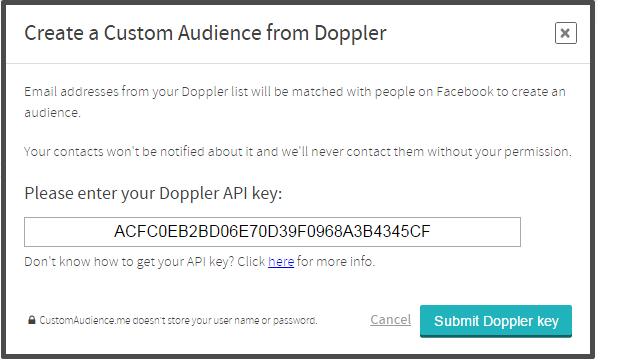 Pega tu API Key