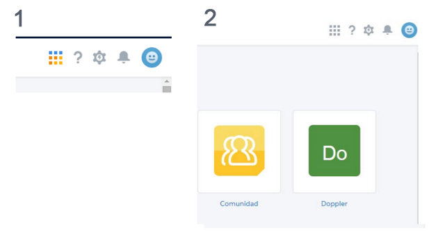 App Doppler + Salesforce